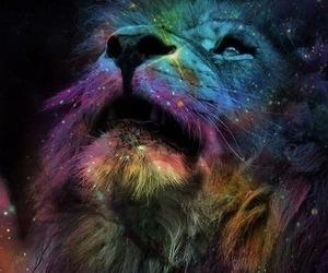 lion, galaxy, and animal image