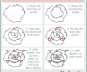 draw, flower, and rose image