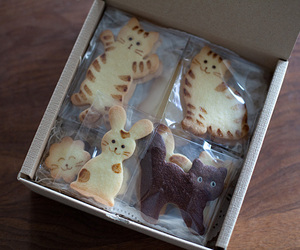 cats, Cookies, and food image