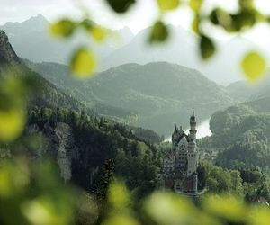castle, green, and nature image