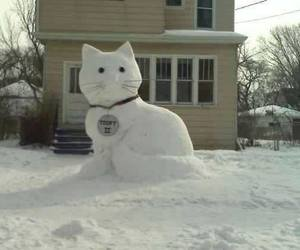 aww, snow, and cute image