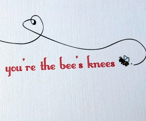 bee and cute image