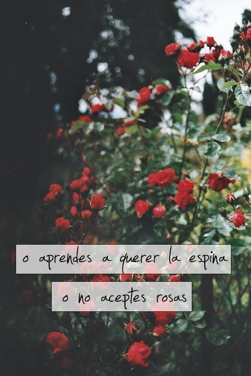 Arjona En Tumblr Uploaded By Flor On We Heart It