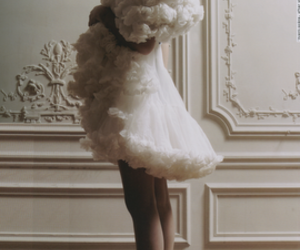 tulle and skirt image