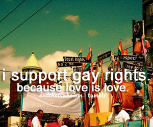 gay, gay rights, and quote image
