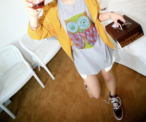 owl and sneakers image
