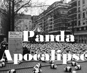 panda, apocalypse, and black and white image