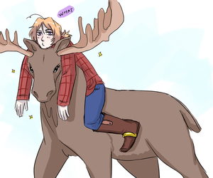 moose, 2p, and aph canada image