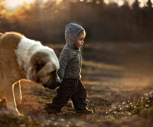 dog, boy, and child image
