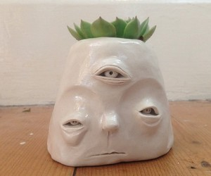 eyes, face, and flower pot image