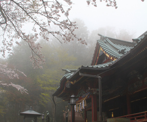 asia, photography, and Temple image