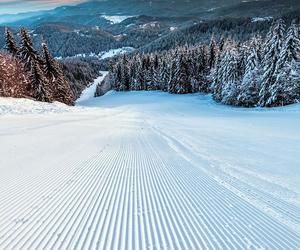 snow, winter, and ski image