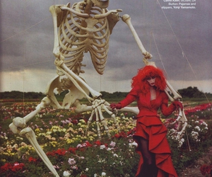 skeleton, red, and tim walker image