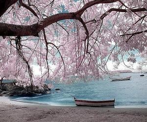boat, beautiful, and beach image