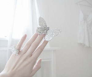 butterfly, hand, and white image