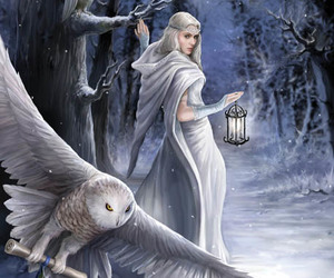 owl, snow, and fantasy image