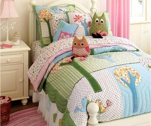 owl and room image