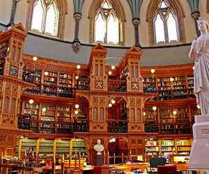 books, library, and want image