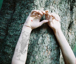 hands, blood, and tree image