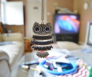 owl, necklace, and photography image
