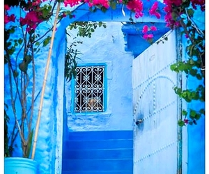 amazing, flowers, and morocco image