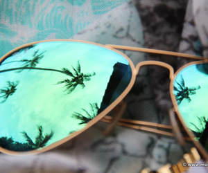 sunglasses, summer, and palms image