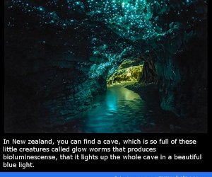amazing, awesome, and cave image