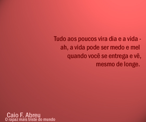 caio fernando abreu, text, and luxquotes image