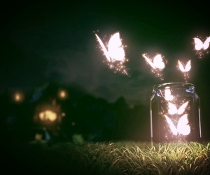 butterfly, night, and light image