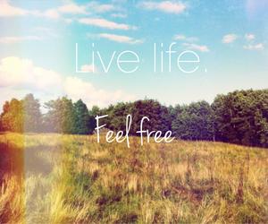 free, life, and live image