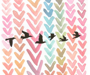 bird, colors, and wallpaper image