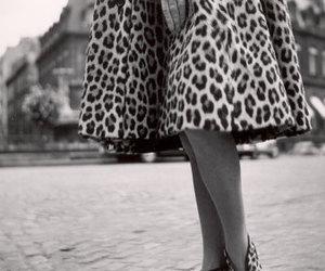 dior, fashion, and vintage image