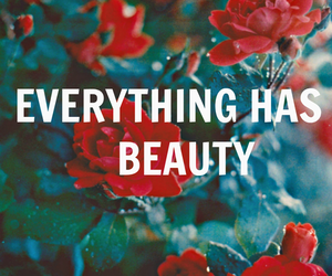 everything, roses, and text image