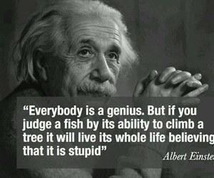 quotes, genius, and Albert Einstein image