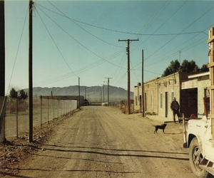Masters of Photography: Stephen Shore