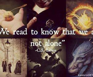 book, harry potter, and narnia image