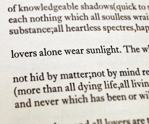 books, sunlight, and lovers image