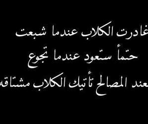 arabic, عربي, and اقتباس image