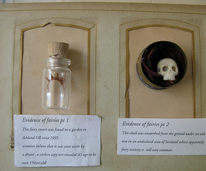 collections, Fairies, and skull image