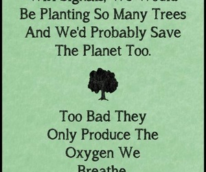 tree, wifi, and oxygen image