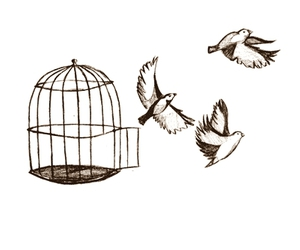birds and cage image