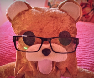 glasses, photography, and pedobear image