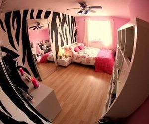 pink, zebra, and room image
