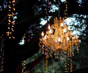 light, chandelier, and tree image