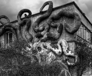 abandoned, black and white, and octopus image