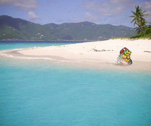 beach, Bowser, and game image