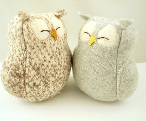 duet, owl, and love image