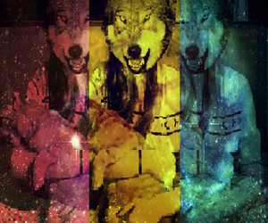 animals, effect, and wolf head image