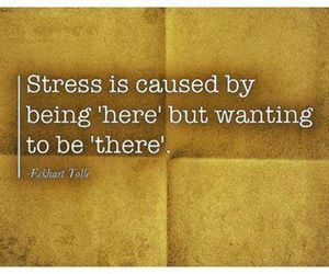 stress, quote, and here image