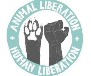 animal liberation, Right, and love image